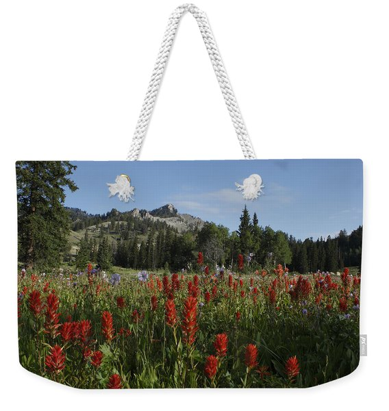 Tony Grove Lake Weekender Tote Bag