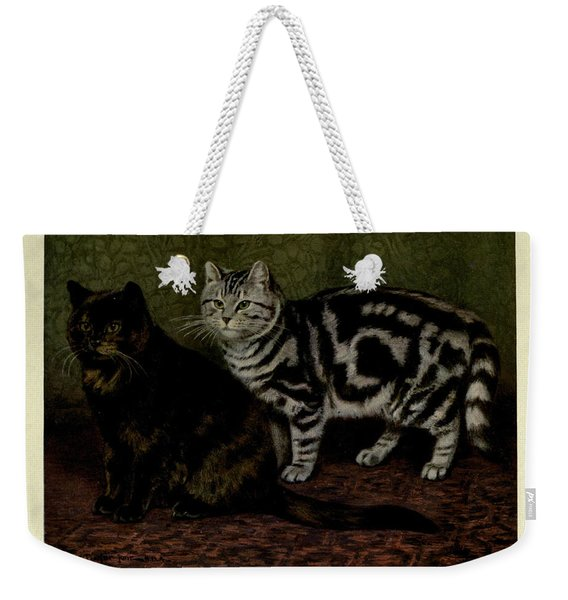 Tortoiseshell Tom And Silver Tabby Cats Weekender Tote Bag