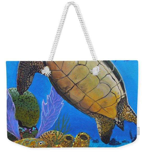 Tortuga Weekender Tote Bag