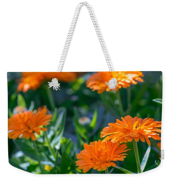 Touch By Light Weekender Tote Bag