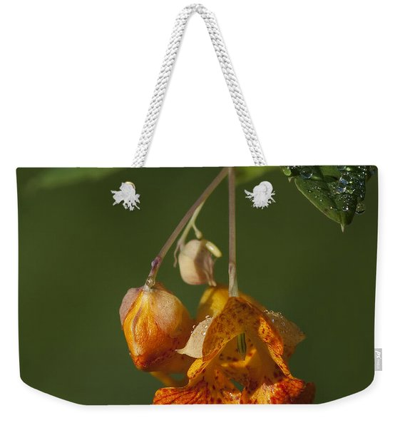 Touch Me Not.. Weekender Tote Bag