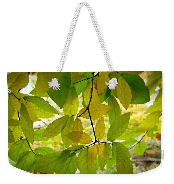 Weekender Tote Bag featuring the photograph Transparency by Patricia Strand
