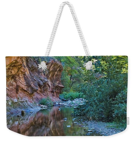 Weekender Tote Bag featuring the photograph Tree Reflection by Mae Wertz