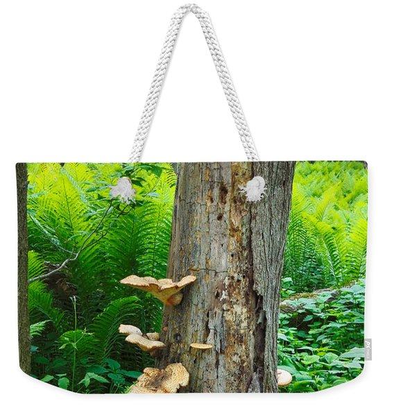 Tree Remnant Weekender Tote Bag
