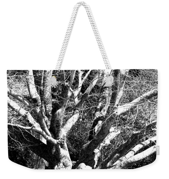 Tree Study In Black N White Weekender Tote Bag