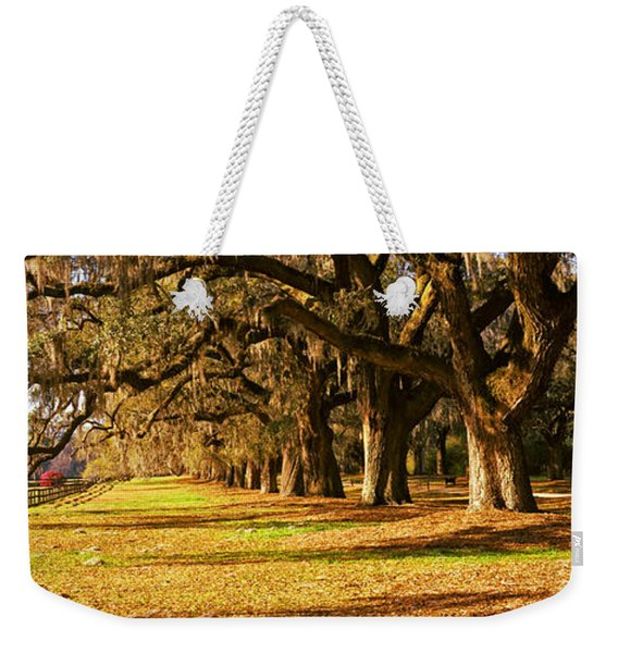 Trees In Garden, Boone Hall Plantation Weekender Tote Bag
