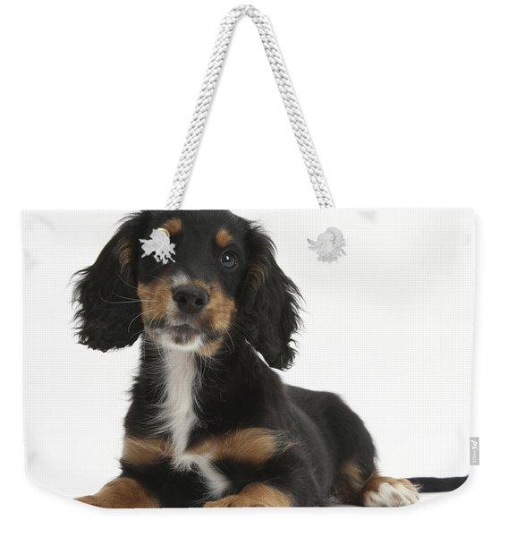 Tricolor Working Cocker Spaniel Puppy Weekender Tote Bag