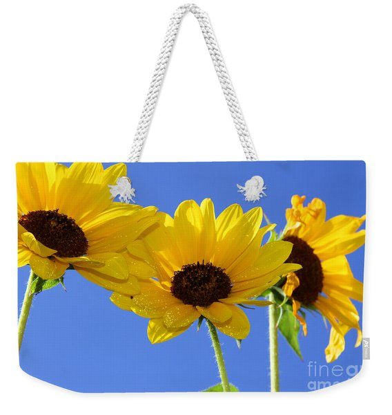 Trio In The Sun - Yellow Daisies By Diana Sainz Weekender Tote Bag