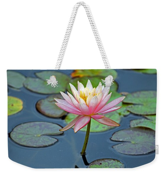 Tropical Pink Lily Weekender Tote Bag
