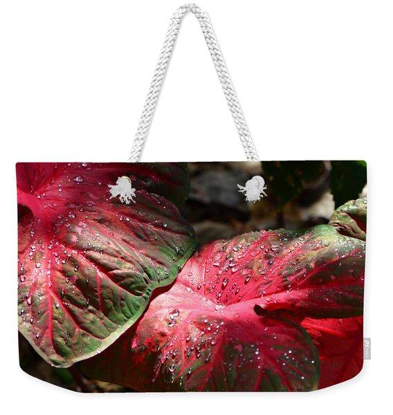 Tropical Rain - Botanical Art By Sharon Cummings Weekender Tote Bag