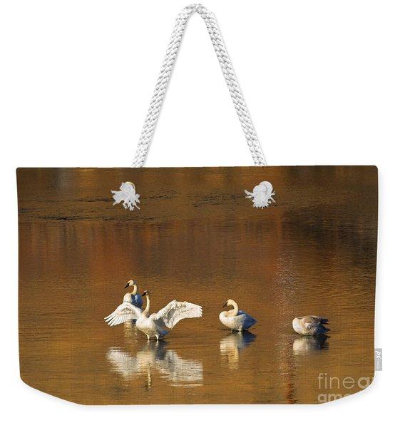 Trumpeter Ballet Weekender Tote Bag