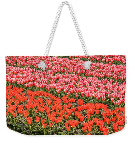 Tulip Fields 2 Weekender Tote Bag