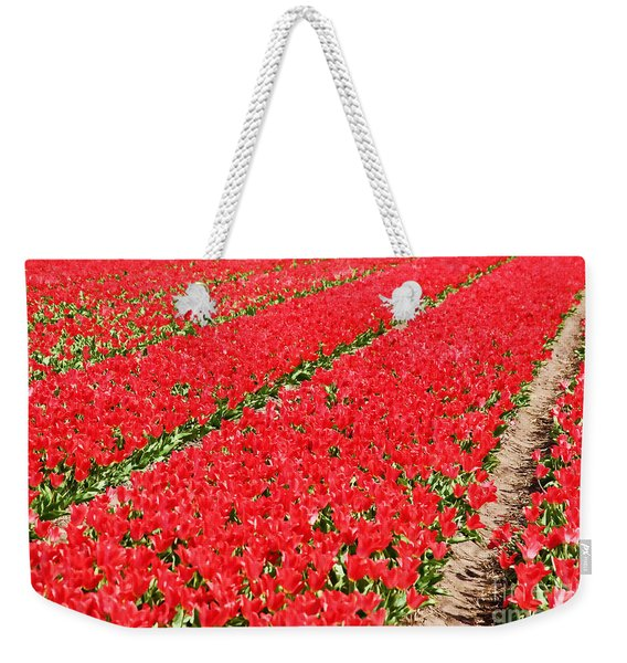 Tulip Fields 3 Weekender Tote Bag