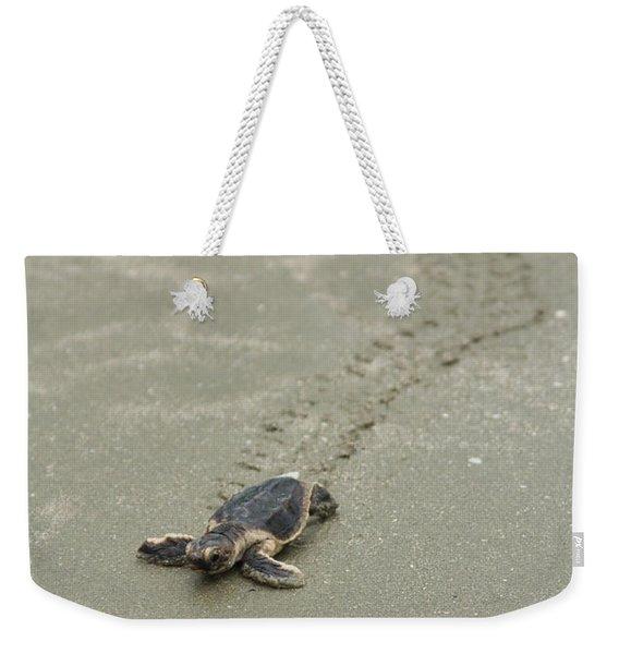 Turtle Tracks Weekender Tote Bag