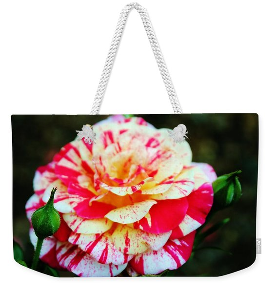Two Colored Rose Weekender Tote Bag