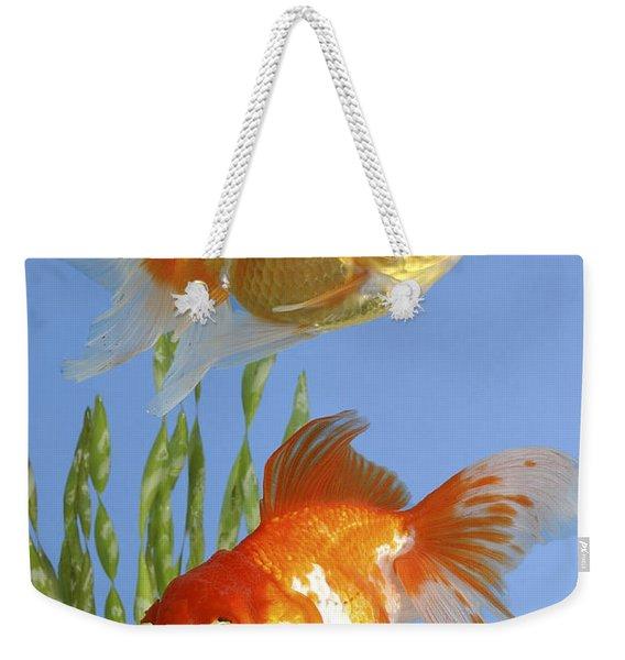 Two Fish Fs101 Weekender Tote Bag