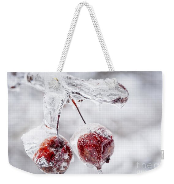 Two Frozen Crab Apples  Weekender Tote Bag