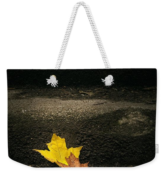 Two Leaves On A Staircase Weekender Tote Bag