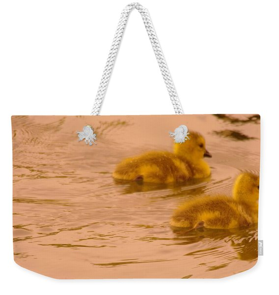 Two Little Furry Fuzzies Weekender Tote Bag