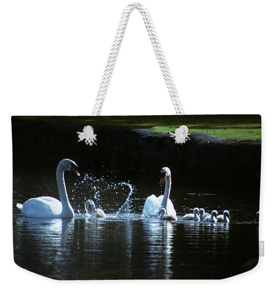 Two Mute Swans With Young Cygnus Olor Weekender Tote Bag