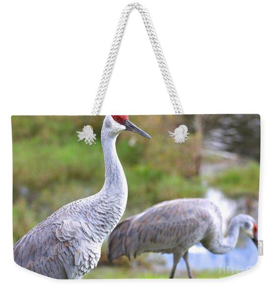 Two Pretty Sandhills Weekender Tote Bag