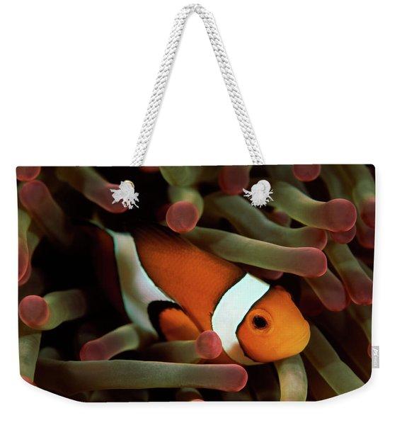 Underwater Scene Of Clown Anemonefish Weekender Tote Bag