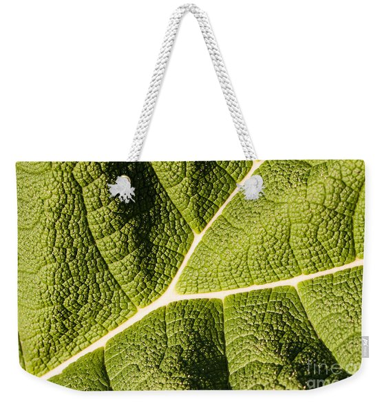 Weekender Tote Bag featuring the photograph Veins Of A Leaf by John Wadleigh