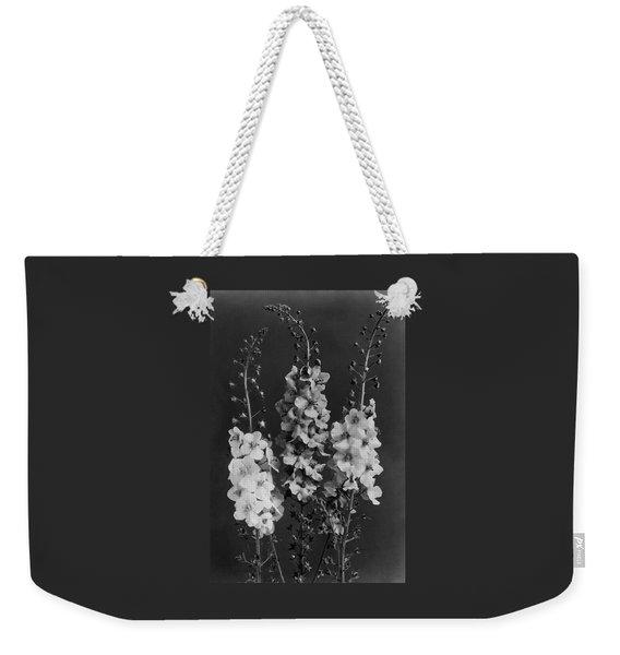 Verbascum Phoeniceum Flowers Weekender Tote Bag