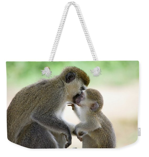 Vervet Monkey,chlorocebus Pygerythrus Weekender Tote Bag
