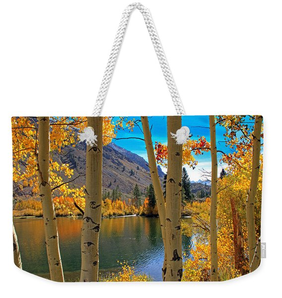 View Through The Aspens Weekender Tote Bag