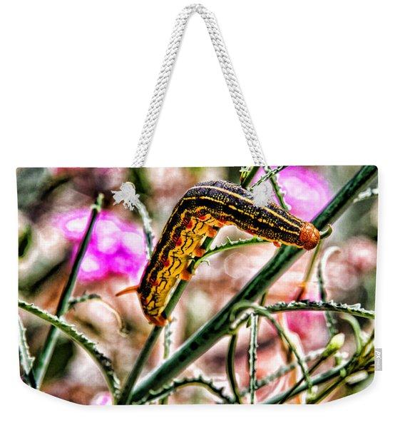 Waiting For Wings By Diana Sainz Weekender Tote Bag