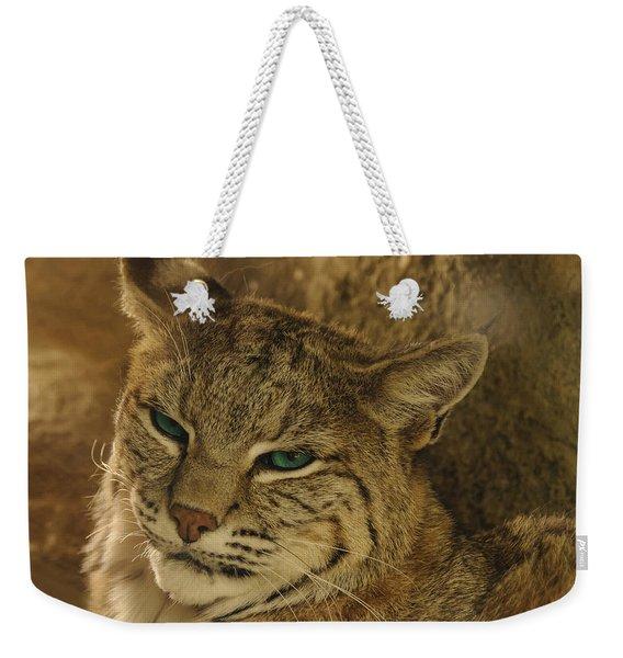 Wary Bobcat Weekender Tote Bag