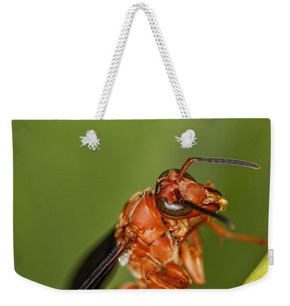 Wasp 1 Weekender Tote Bag