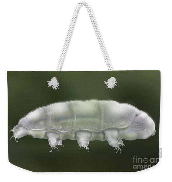 Water Bear Tardigrada - Waterbear Tardigrade  - Scientific Illustration Weekender Tote Bag