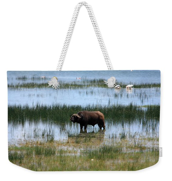 Water Buffalo At Lake Nakuru Weekender Tote Bag