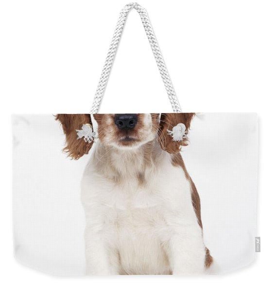 Welsh Springer Spaniel Dog Weekender Tote Bag
