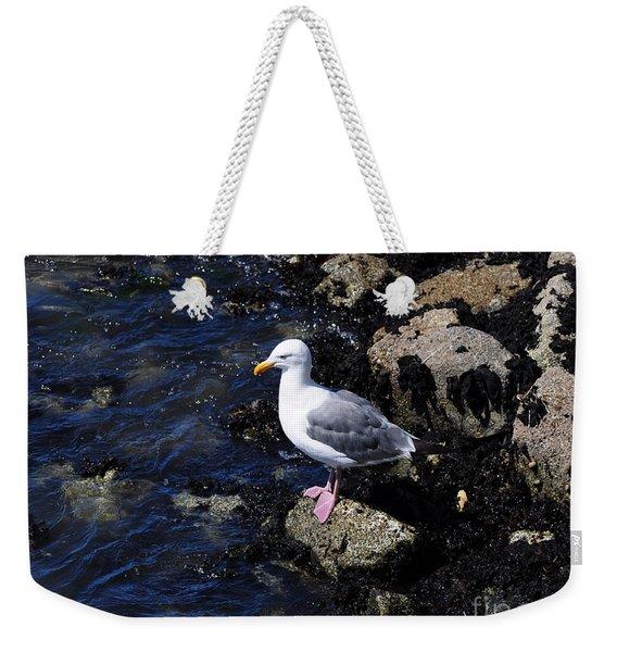 Western Gull On Rocks Weekender Tote Bag