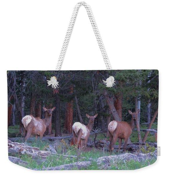Elk In Rocky Mountain National Park Weekender Tote Bag
