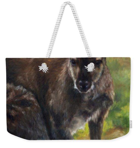 What'ch Ya Doin' Weekender Tote Bag