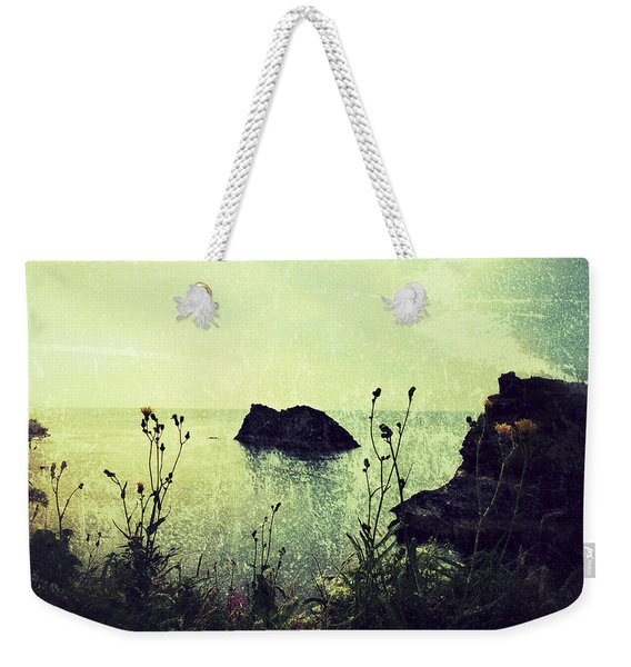 Where There Be Wilde Things  Weekender Tote Bag