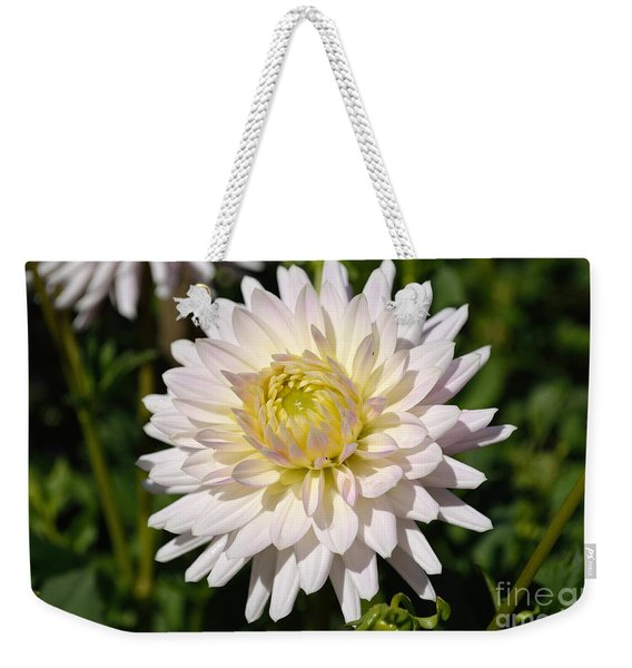 Weekender Tote Bag featuring the photograph White Dahlia Flower by Scott Lyons