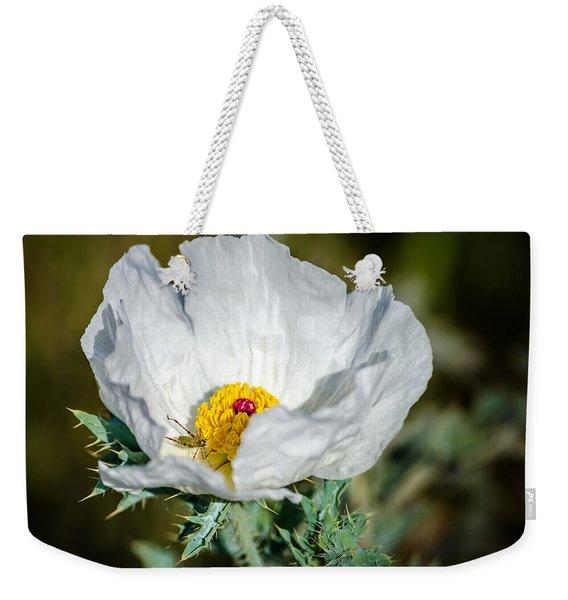 White Prickly Poppy Wildflower Weekender Tote Bag