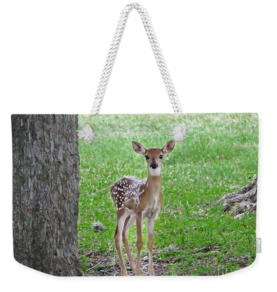 White-tailed Fawn - Face Of Innocence Weekender Tote Bag