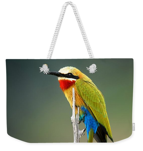 Whitefronted Bee-eater Weekender Tote Bag