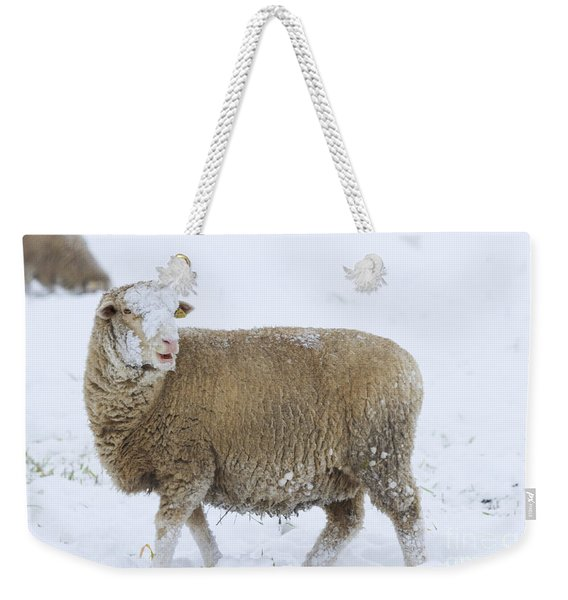 Who Threw The Snowball Weekender Tote Bag