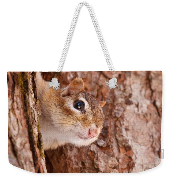 Weekender Tote Bag featuring the photograph Whos That Knocking On My Door by Jeff Sinon