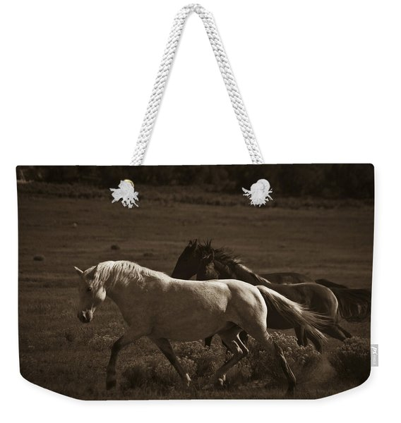 Weekender Tote Bag featuring the photograph Wild Mustangs Of New Mexico 10 by Catherine Sobredo