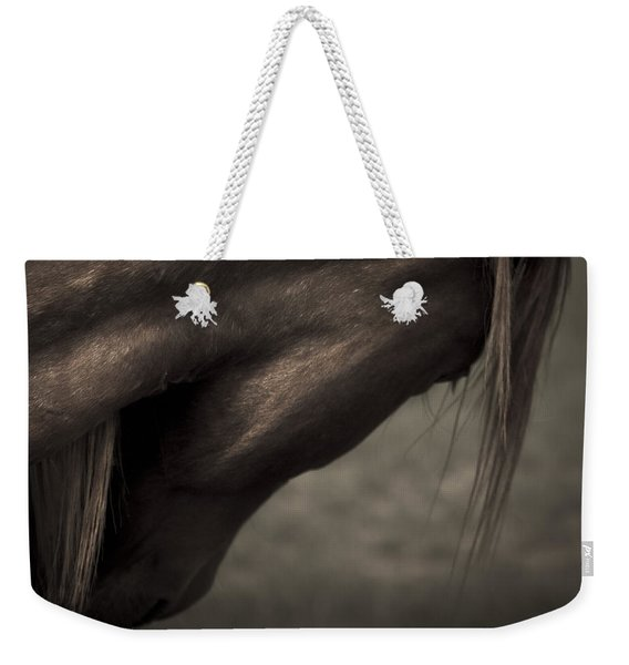 Wild Mustangs Of New Mexico 11 Weekender Tote Bag