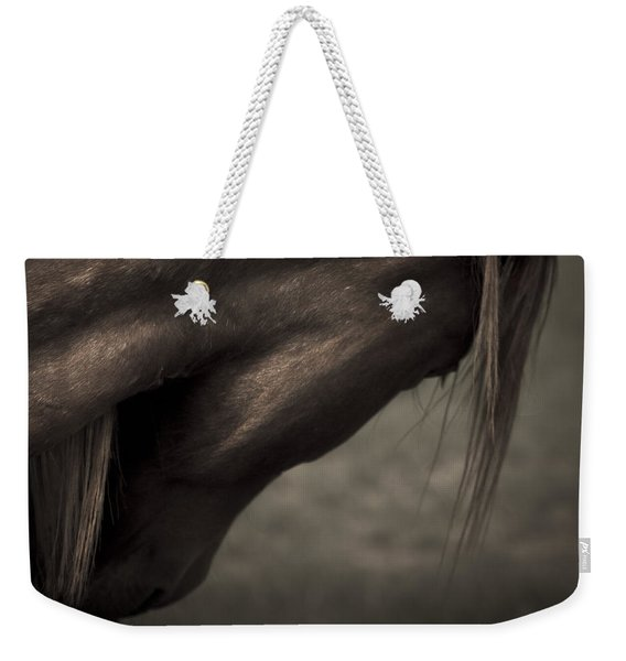 Weekender Tote Bag featuring the photograph Wild Mustangs Of New Mexico 11 by Catherine Sobredo