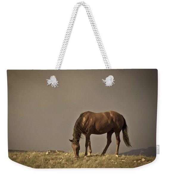 Wild Mustangs Of New Mexico 20 Weekender Tote Bag